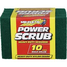 Heavy duty scourers